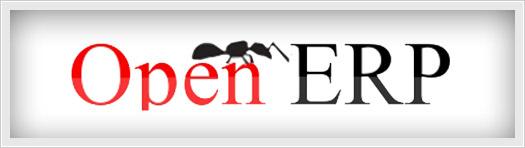 consulenza-openerp